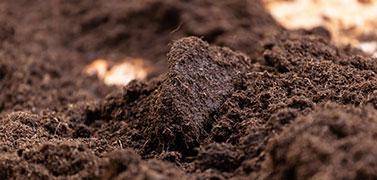 Vente de terre végétale marennes