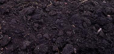 Vente de terre végétale oléron
